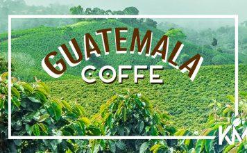 GUATEMALA Kahvesi Özellikleri