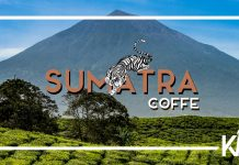 Sumatra Kahvesi