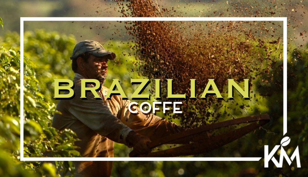Brezilya Kahvesi Nedir